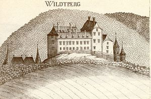 Schloss Wildberg, Stich Vischer 1672